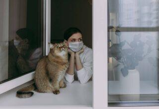 Evcil hayvanım COVID-19 için test edilmeli mi?