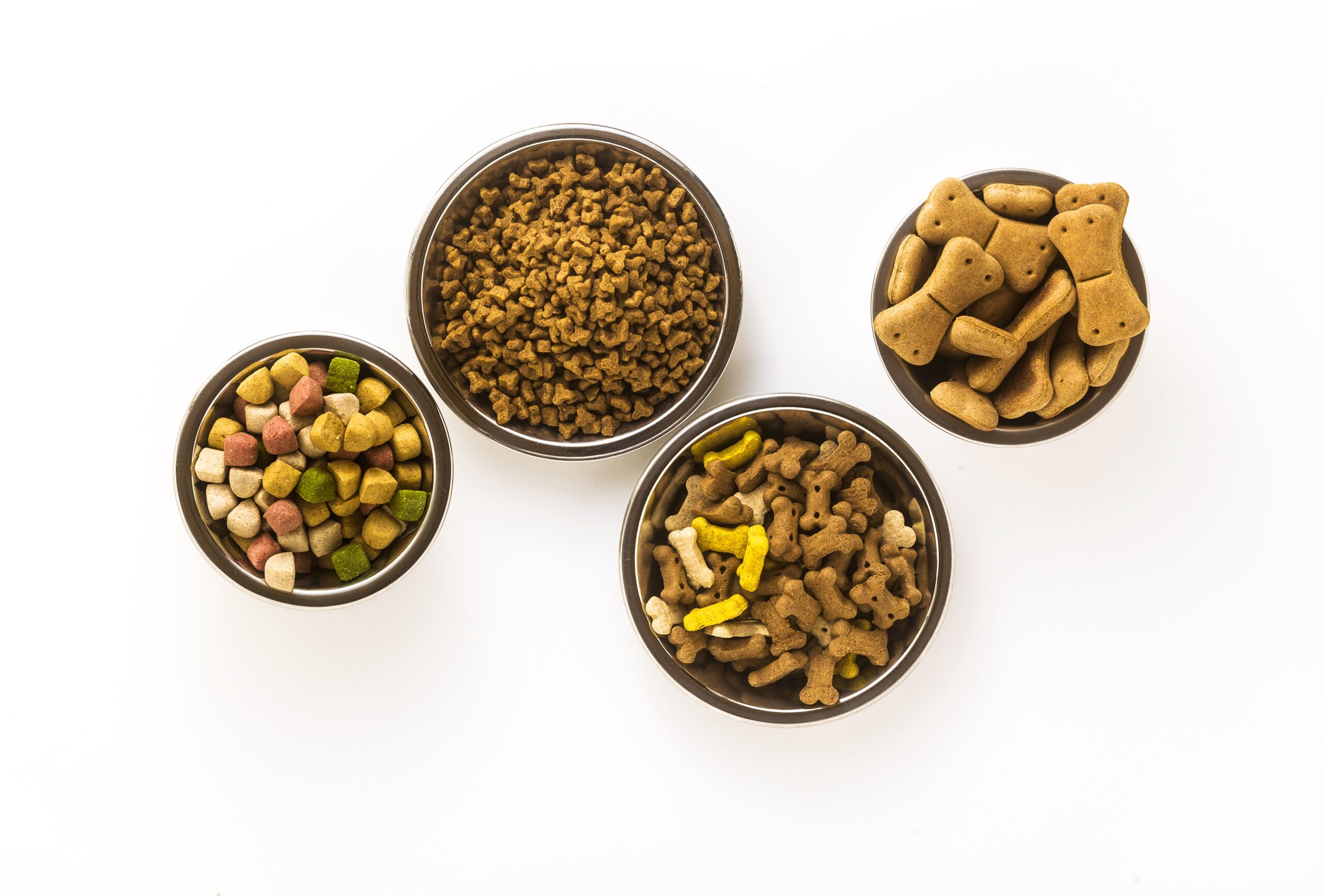 Köpeklere Hangi Ayda Ne Kadar Mama Verilir? 3-6-12 Aylık Köpeklerde Beslenme